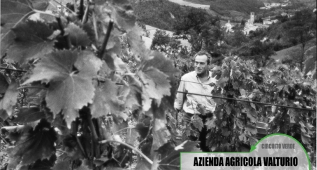 Azienda Agricola Valturio